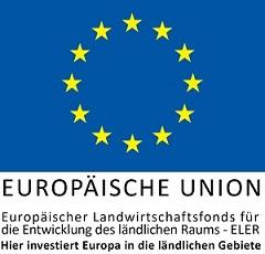 EU-Logo-Hier-iInvestiert_zentriert.j